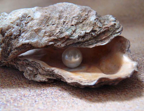 Tanya's Pearl – How Nature can Enhance Your Creativity